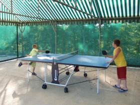 Partie de ping-pong